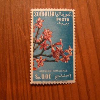 Сомалі,Флора