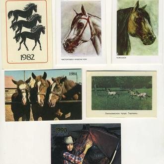 Карманные календарики Животные Лошади 6 шт. (№2)