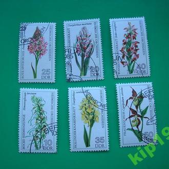Германия. 1985. Цветы