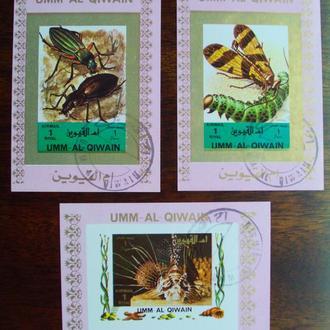 Умм-ель-Кувейн.1972г. Фауна. Бабочки. Б/п.