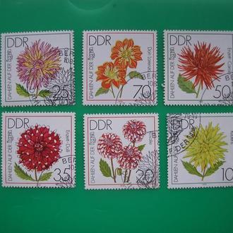ГДР Цветы 1979  *