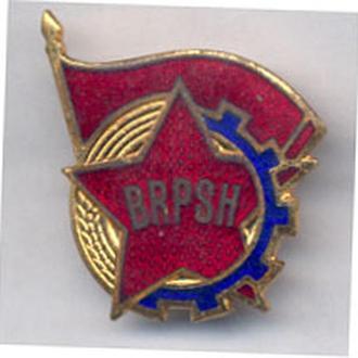 Знак Пионеры Албания Членский знак.