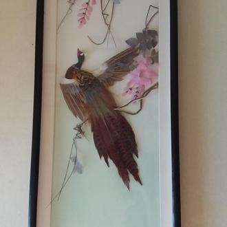 картина из перьев под стеклом