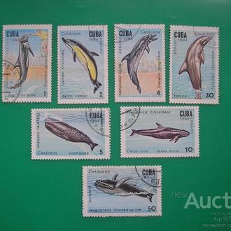 Куба 1984 дельфины * полн. серия