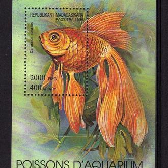 Мадагаскар Фауна Рыбы Блок Чистый Редкий