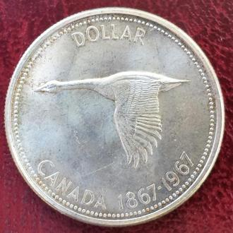 Канада. 1 Доллар 1967 год. Канадский Гусь.Серебро, оригинал