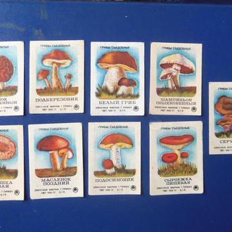 спичечные этикетки (37)  18шт  грибы