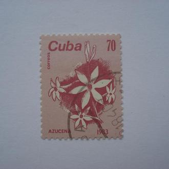 Флора.Куба.1983 год. 1 марка.С 1 гривны.