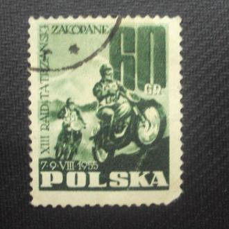 Польша гаш. 1955г.
