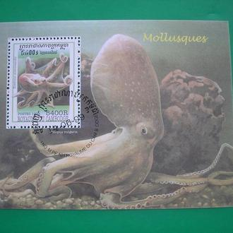 Кампучия 1999 Моллюски * Полн. сер.