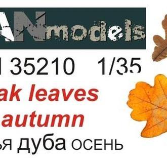 Danmodel 35210 - Модельные (макетные) дублвые листья (осенние) для диорам. Полулатекс