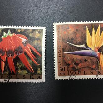 Почтовые марки Польша 31