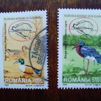 Румыния.1999г. Фауна. Птицы. Полная серия.