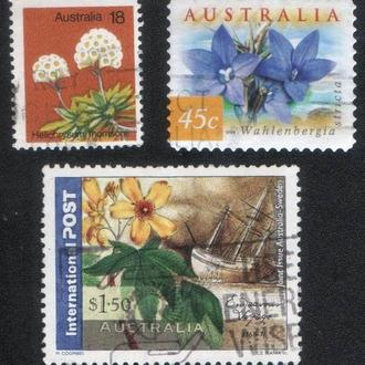 Австралия. Флора, цветы