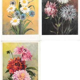 Открытки 1976 Цветы, худ. Ряховский