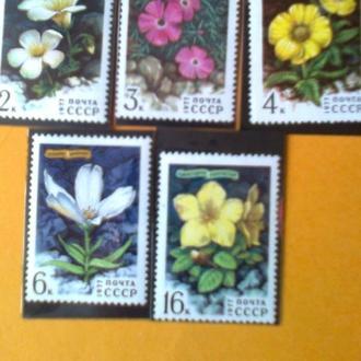 СССР 1977 Цветы гор Сибири