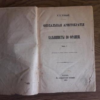 Лучицкий И.В. Феодальная аристократия и кальвинисты во Франции. Часть 1 Диссертация (1871)