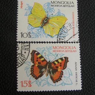 Монголия бабочки
