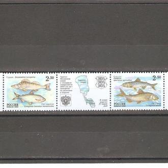 Россия  2000г.  MNH  (см. опис.)