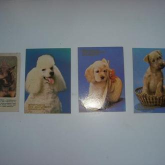 4 карманных календарика , собаки, выпуск 1990 и 1988 год.