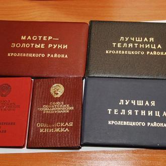 орден знак почета + за трудовую доблесть + документы