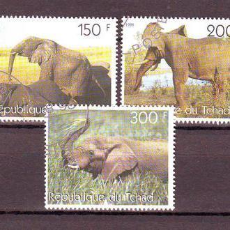 Чад. 1998г. Слоны