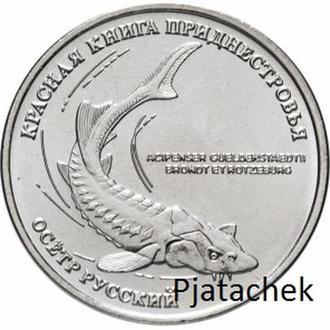 Приднестровье, 1 рубль 2018 года, Красная книга. Осетр