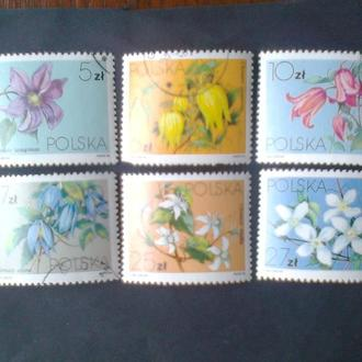 Польша 1984г  Флора цветы