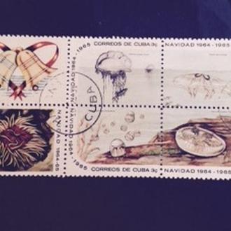 Куба 1964г   Морская фауна медуза