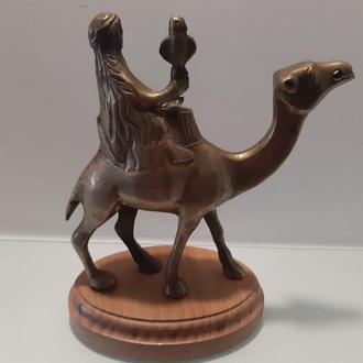 бедуин на верблюде . соколиная охота