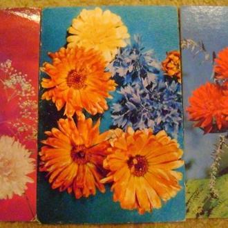 Квіткова композиція (3) 1975-1978рр (8шт)