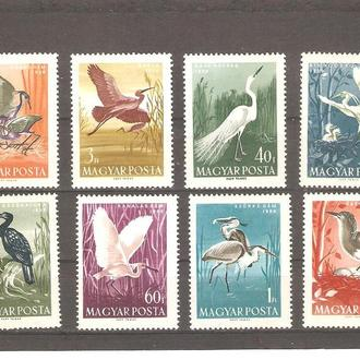 Фауна  Туркменистан  1959г.  (см. опис.)