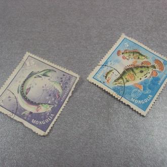 марки Монголия рыбы лот 2 шт №205