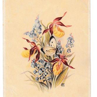 Открытка 1953 Цветы, Германия, Frauenschuh, Nr. 1595, подписана