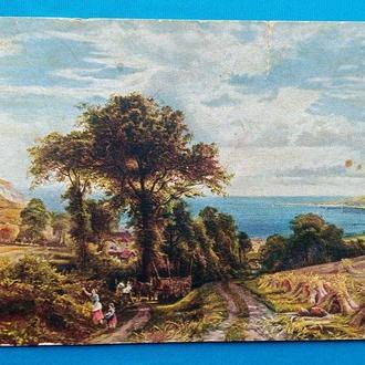 Сбор урожая. старинная открытка