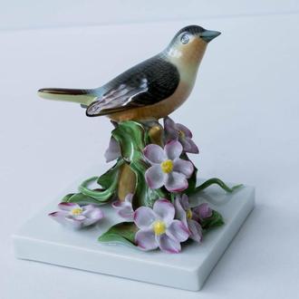 Фарфоровая статуэтка фарфор Herend птица на ветке Венгрия