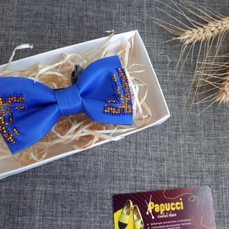 Краватка-метелик синього кольору