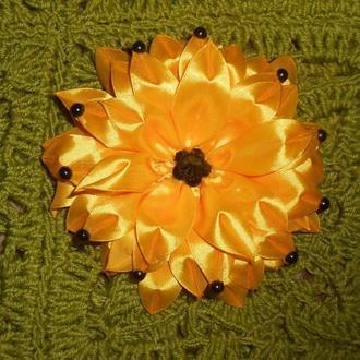 Велика пишна хризантема