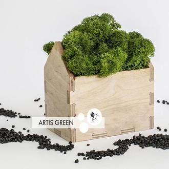 Корпоративный новогодний подарок со скандинавским мхом Moss Houses Green