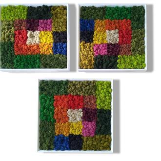 """Картина из разноцветного скандинавского мха """"Iris"""""""