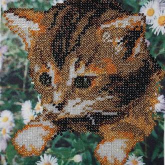 Котик в ромашках - вышитая бисером картина