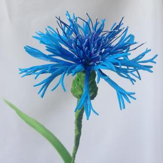 Цветок Василёк