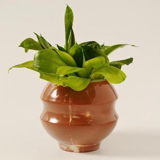 Оригиналный цветочный горшок, капшо для кактусов, вазон для суккулентов, сукулентов