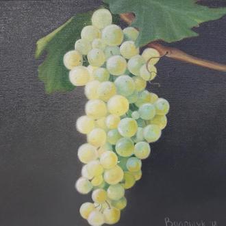 Зеленый виноград, картина маслом, авторская живопись размером 24х24см
