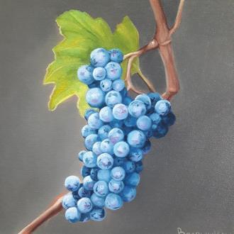 Синий виноград, картина маслом, авторская живопись размером 24х24см