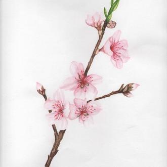 """Акварель """"Весна"""""""