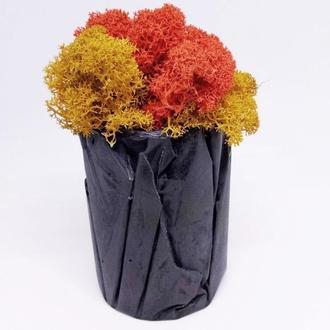 """горшок из бетона """"Вулкан"""" и скандинавский мох, Подарок на Новый год, подарок маме, подарок на 8 март"""