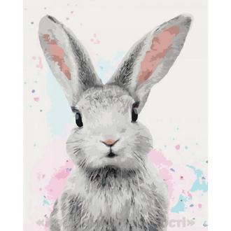 Картины по номерам Сахарный кролик, 40х50см. (КНО4067)