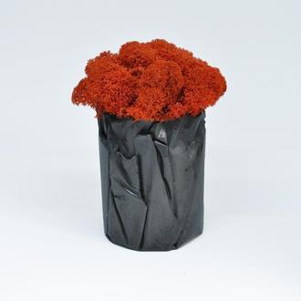 """Красный мох и бетонный горшок """"Вулкан"""" Что подарить на Новый год, что подарить маме, подарок на 8"""