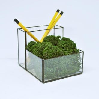Карандашница-мосариум для современного офиса под карандаши,ручки и темно-зеленый мох